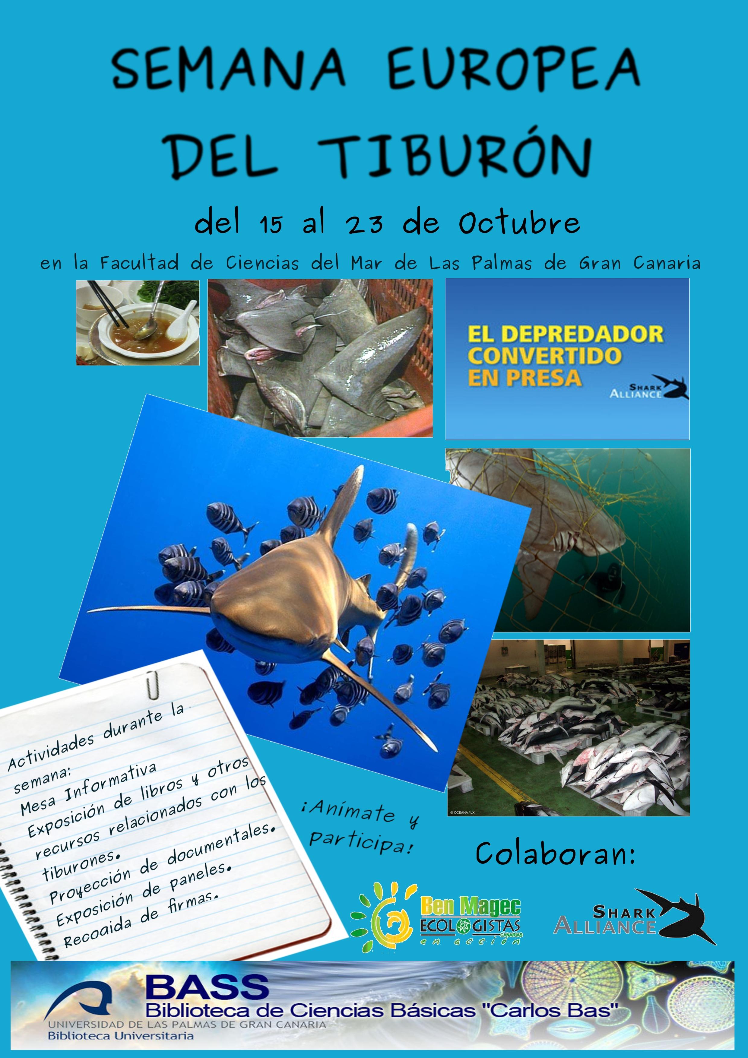 Semana Europea del Tiburón 2011 en la Facultad de Ciencias del Mar (ULPGC)