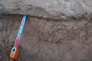 Detalle de fragmentos de huevos de ratite, fuente de Gusa ; Lanzarote