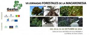 Jornadas_Forestales_Macaronesia